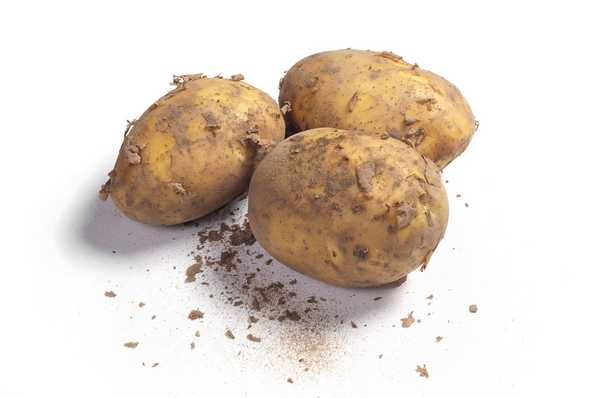 Dirty Lover Potatoes 1kg