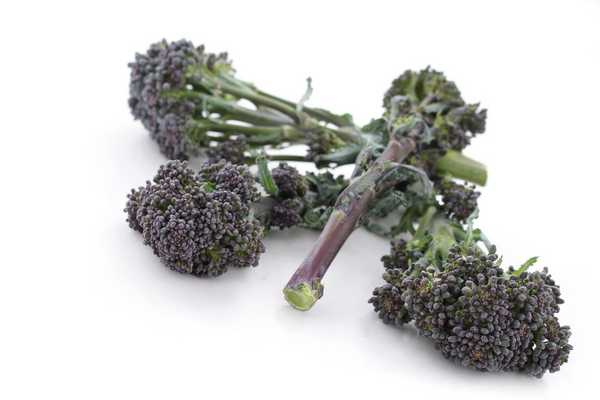 Purple Sprouting Broccoli 500g